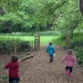Little Wild Nursery