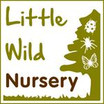 Little Wild Nursery Wild Education logo