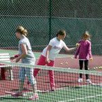 sheen lawn tennis & squash club